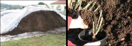 Prestavert p pini re ecologique terreaux biocompost - Terreau en vrac ...
